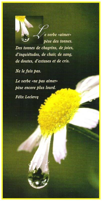Citations d'amour